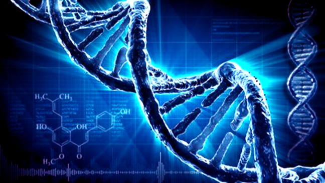 DNA emits blue light